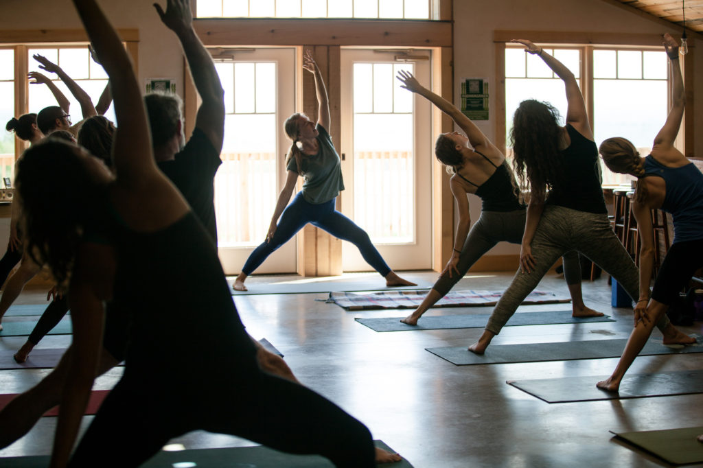 Farmscape Yoga at the Finger Lakes Cider House